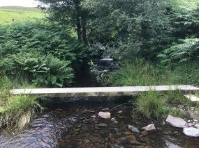 Lovely Stream Crossing